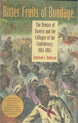the destructive institution of slavery in the u.s essay Slavery and justice report of the brown university sion of the institution in the south brown uni-versity was shaped by all of these developments,.