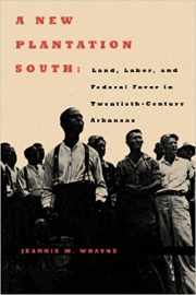 A New Plantation South: Land, Labor, and Federal Favor in Twentieth-Century Arkansas